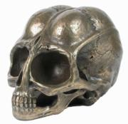 Alien Skull in Bronze Finish by Design Clinic