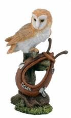 Barn Owl and Horse Collar