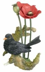 Blackbird and Poppies