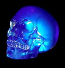 Blue Skull by Design Clinic