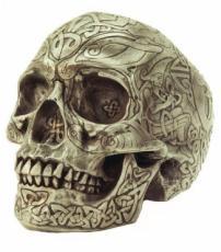 Celtic Skull in Bone Finish by Design Clinic