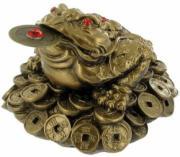 Golden Money Toad