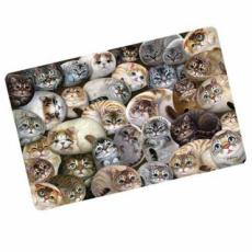 Henry Cats Plastic Work Top Saver/Cat Placemat
