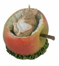 Mouse in Apple