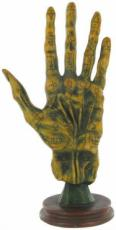 Palmistry Hand by Alchemy