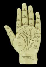 Palmistry Hand (Large)