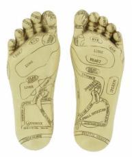 Reflexology Feet by Tina Tarrant