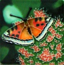 Set of 4 Butterfly Fridge Magnets