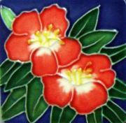 Set of 4 Red Hibiscus Fridge Magnets