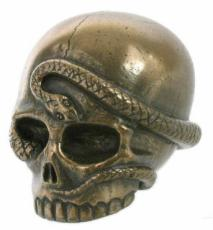 Snake Skull in Bronze Finish by Design Clinic