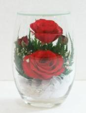 Two Roses in a Rugby Glass